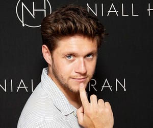 tumblr and niall horan image