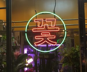 flor, neon, and neon lights image