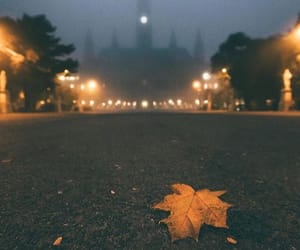 autumn, awesome, and drizzle image