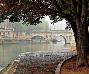 article, autumn fall, and articles image
