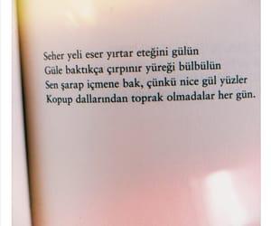 turkce, kitap, and leyla ile mecnun image