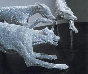 dog, animal, and art image