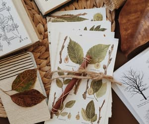 book, green, and herbology image