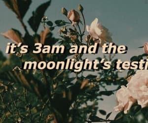 aesthetic, Lyrics, and tumblr image