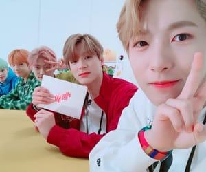 jaemin, jisung, and chenle image