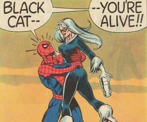 black cat, Marvel, and felicia hardy image
