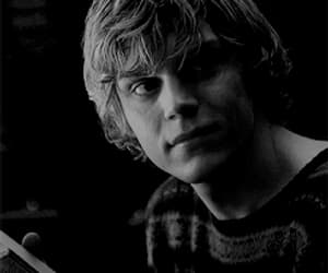gif, evan peters, and love image