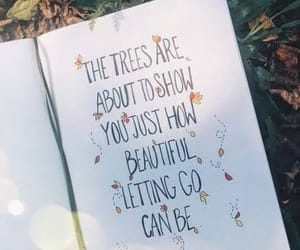 fall and quotes image