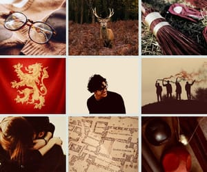 aesthetic, harry potter, and marauders image