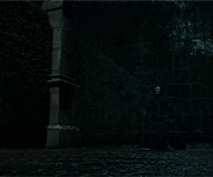 gif, jk rowling, and harry potter image