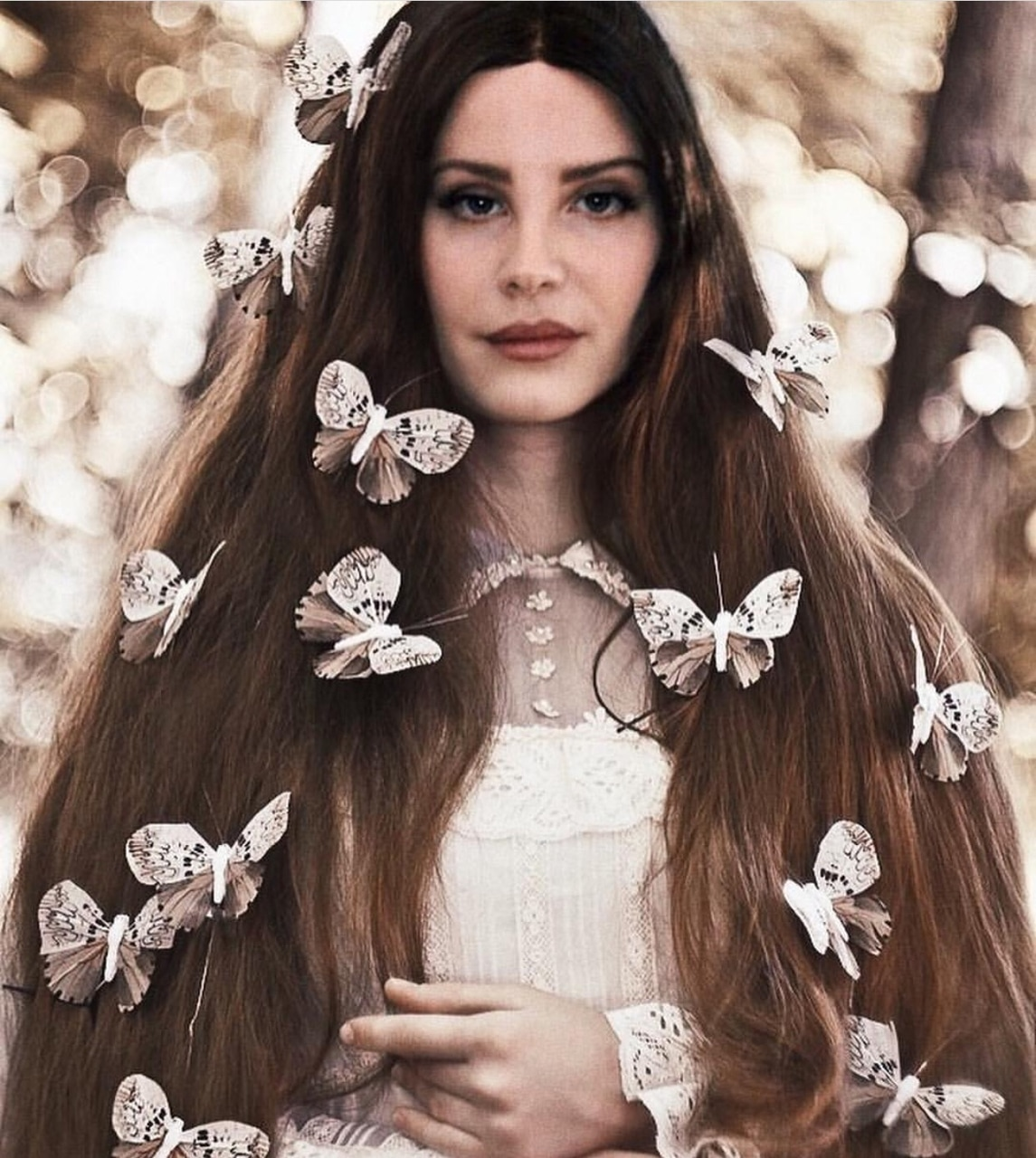beauty, butterflies, and hairstyle image