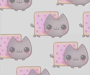 background, cat, and grey image