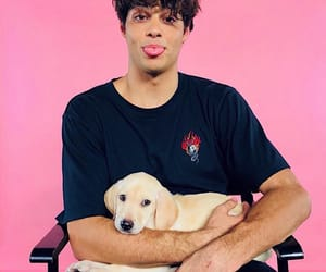 noah centineo, boy, and puppy image