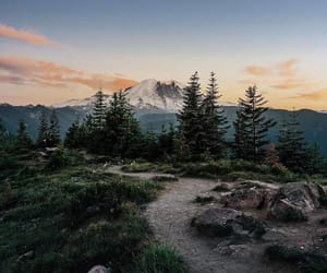 mountain, mt. rainier, and national park image