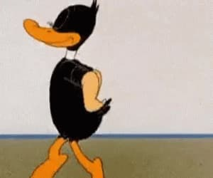 gif and gif daffy duck funny image