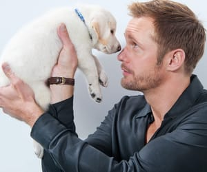alexander skarsgard, cute, and dog image