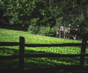 country living, farm, and landscape image