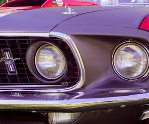 cars, muscle car, and purple image
