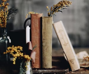 book, flowers, and fall image