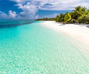 travel, vacation, and dominicanrepublic image