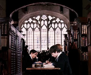 gif, harry potter, and harry potter gifs image