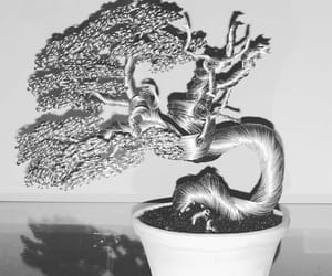 bonsai, miniature, and wire image