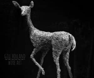 animal, dear, and miniature image