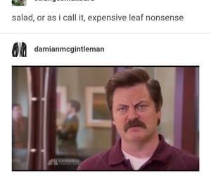 funny, salad, and tumblr image