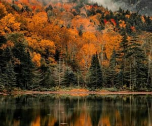autumn colors, landscape photography, and new england image