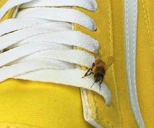yellow, bee, and aesthetic image