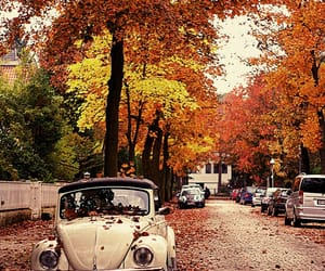 autumn, vintage, and fall image