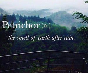 rain, petrichor, and quotes image
