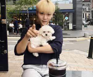 kpop, Seventeen, and seungkwan image
