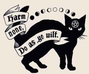 black cat, wicca, and quotes image