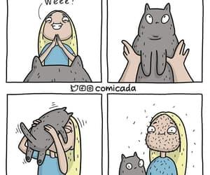 gatito image