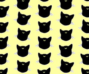 black cat, pattern, and wallpaper image