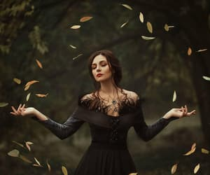 fantasy, forest, and witch image