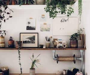 plants and decor image