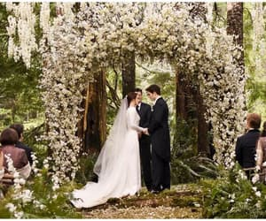 twilight, wedding, and breaking dawn image