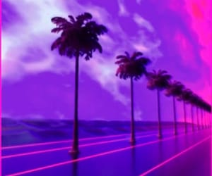 palms, purple, and wallpaper image