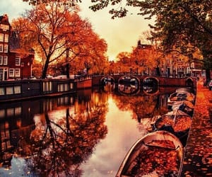 autumn, canal, and fall image