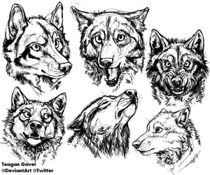 art, wolf, and dog image