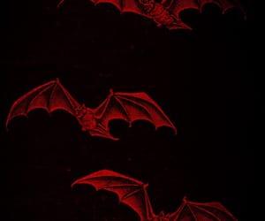 bat, black, and red image