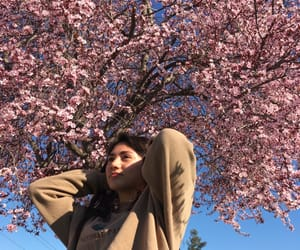 blossom, tumblr, and brown image