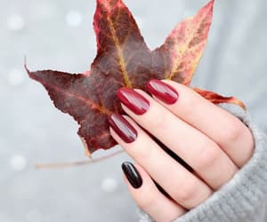 autumn, nails, and red image