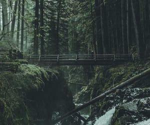 adventure, beautiful, and dark image