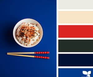 aesthetics, colors, and rice image