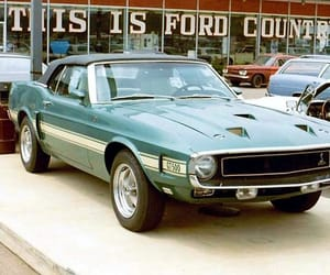 1969, mustang shelby, and cars image