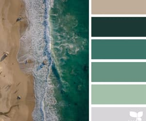 aesthetics, outdoors, and seeds color image