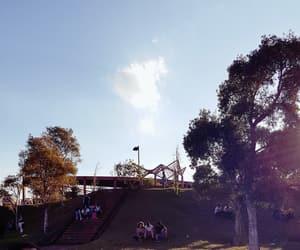 brazil, university, and nature image